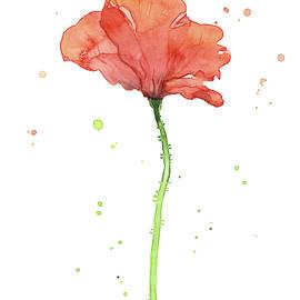 Poppy Flower  by Olga Shvartsur