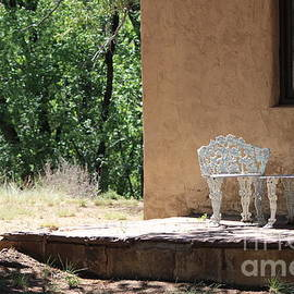 Porch Scene With Woodpecker On Tree Fort Stanton by Colleen Cornelius