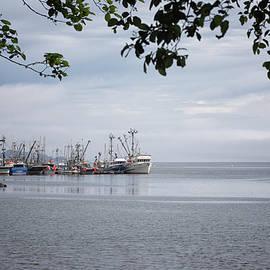 Port Hardy Marina by Randy Hall