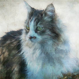 Portrait Sitting by Terry Davis