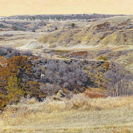 Prairie Slopes Reverie by Cris Fulton