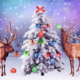 Mihaela Pater - Preparing for Christmas