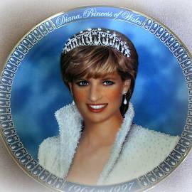 Princess Diana by Kay Novy