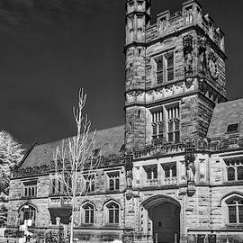 Princeton University Buyers Hall II by Susan Candelario