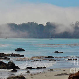 Private Hearst Family  Beach San Simeon CA