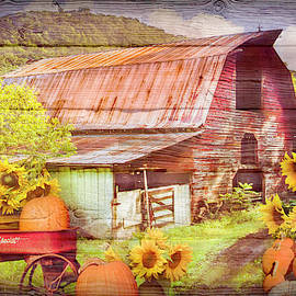 Pumpkins in the Sunflowers on Wood Textures by Debra and Dave Vanderlaan