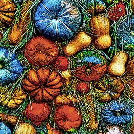 Pumpkins. Textures. by Andy Za