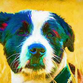 Puppy 482 - Painting by Ericamaxine Price
