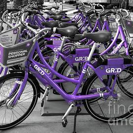 Purple Bikes by Elisabeth Lucas