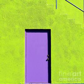 Purple Door by Lenore Locken