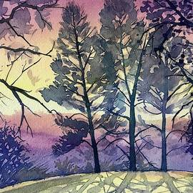 Three Pines on Skyline by Luisa Millicent