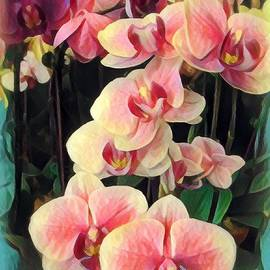 Purple Orchids for My Love - Stylized by Miriam Danar