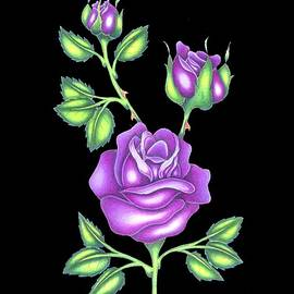 Purple Roses by Brian Ritchie