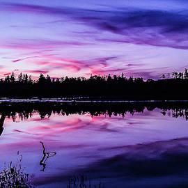 Purple Skies by Su Buehler
