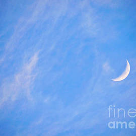 Quarter Moon Blues by Gary Richards