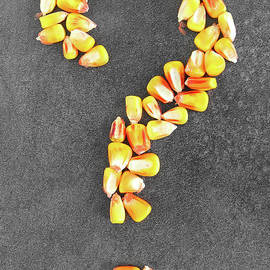 Question mark written with corn by Gregory DUBUS