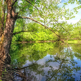 Quiet Reflections by Debra and Dave Vanderlaan