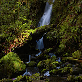 Quinault Waterfall by Lost River Photography