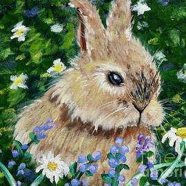 Rabbit In Field Of Flowers by Jacqueline Athmann