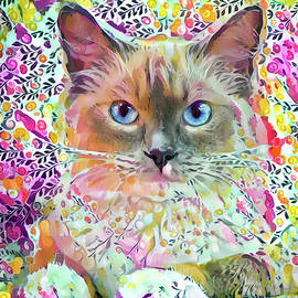 Ragdoll Cat Art by Peggy Collins