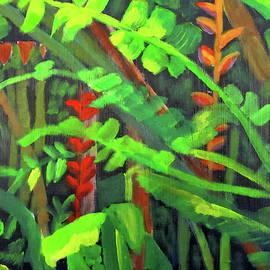 Rain Forest Memories by Linda Feinberg