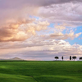 Rain On The Tuscan Plain by Harriet Feagin
