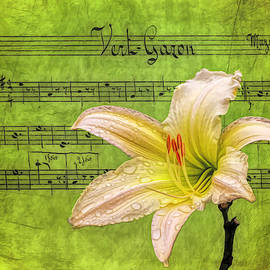 Raindrops on Lily Painted by Judy Vincent