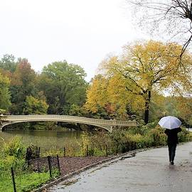 Rainy Day in Central Park by Carol McGrath