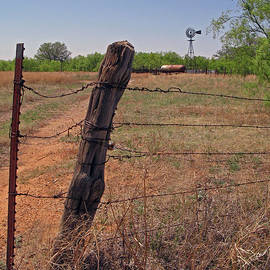 Ranching Stakes and Rust by Nieves Nitta
