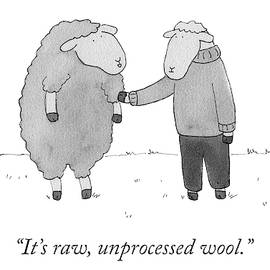 Raw Unprocessed Wool by Amy Hwang