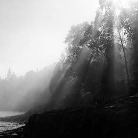 Ray of hope by Angela King-Jones