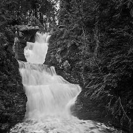 Raymondskill Waterfalls Bw by Susan Candelario