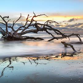 Reaching Into the Salty Sea by Debra and Dave Vanderlaan