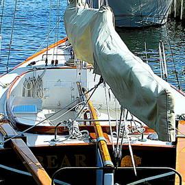 Ready for a Sail by Arlane Crump