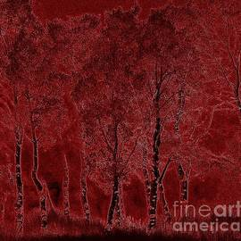 Red Aspen Grove by Barbara Henry