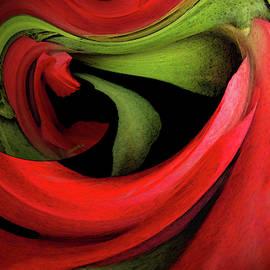 Red Ballet by Carel Schmidlkofer