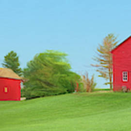 Red Barns in Summer by Nikolyn McDonald