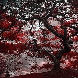 Red Blossom Tree by Art Shack