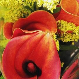 Red Callas by Sarah Loft