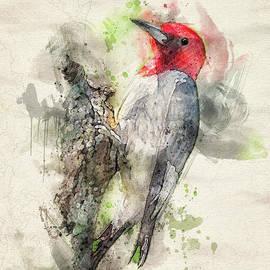 Red Headed Woodpecker by Lois Bryan