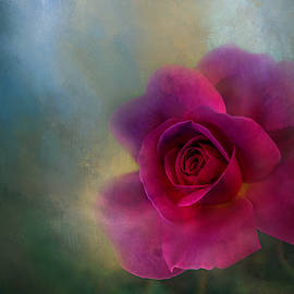 Red, Red Rose Textured by Terry Davis