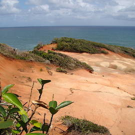 Red Rocks Shore by Rose Wark