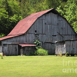 Red Roof by Kathy M Krause