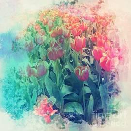Red Tulips by Miriam Danar