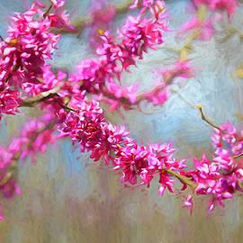 Lorraine Baum - Redbud Tree Abstract