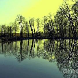 Reflection In A Golden Glow by Jasna Dragun