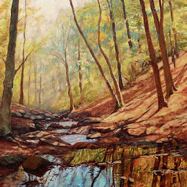 Reflections - Little Stony Creek at Peaks of Otter by Bonnie Mason
