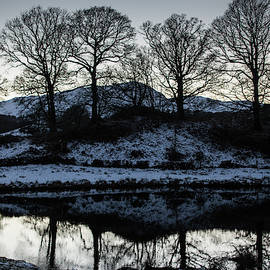 Reflections of Winter Trees by Mark Hunter