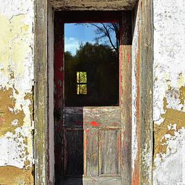 Reflections on a Weathered Door by Regina Geoghan
