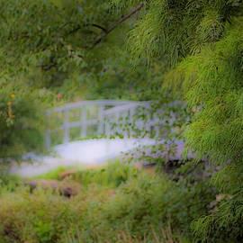 Rendezvous Bridge by Diane Lindon Coy